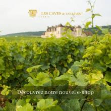 Les Caves de Taillevent Paris lancent leur e-shop ! Retrouvez une sélection de références exceptionnelles et commandez directement en ligne.